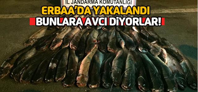 Erbaa'da sağlıksız koşullarda paketlenmiş 300 kilo balık ele geçirildi