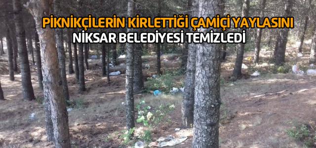 Niksar Belediyesi Çamiçi Yaylasını temizledi