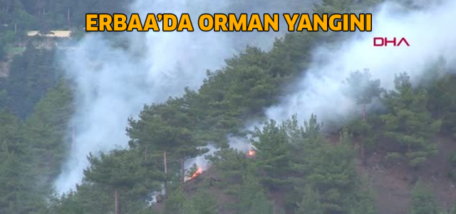 Erbaa'da orman yangınında 30 dekarlık alan zarar gördü