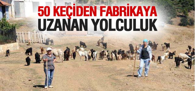 İki Kadının 50 Keçi ile Başlayan Ortaklığı Fabrika Yolunda