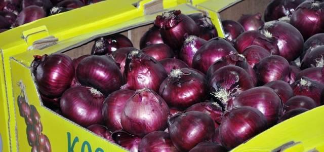 Mor soğan Arap ülkelerine ihraç ediliyor