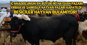Erbaa hayvan pazarının kapatılması...