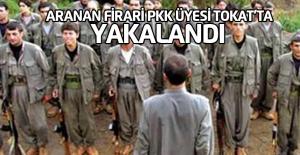 Aranan PKK Üyesi Hükümlü Tokat'ta Yakalandı