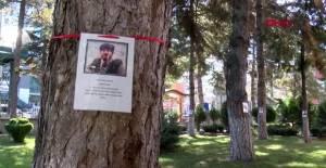 Tokat okul bahçesindeki ağaçlara şehitlerin ismi verildi