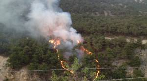 Reşadiye'de orman yangını