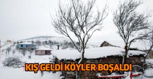 Kışın hayvanları için köyünü terk etmiyor
