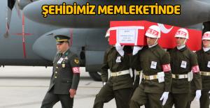 Şehit Gökhan Güllü'nün naaşı memleketi Turhal'da