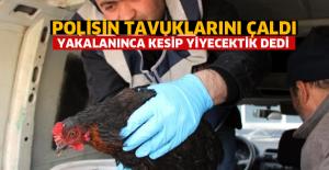 Polisin Tavuklarını Çalan Hırsızlar, Polise Enselendi