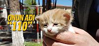 Erbaa itfaiyesi sevimli kediyi kurtardı