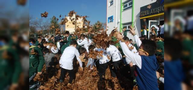 Okul bahçesine bir kamyon yaprak döküldü