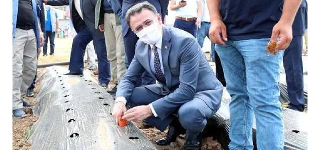 Vali Balcı: Bizim Tokat'ta bir numaralı işimiz tarım