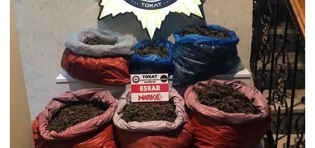 Erbaa'da uyuşturucu operasyonu: 1 tutuklama