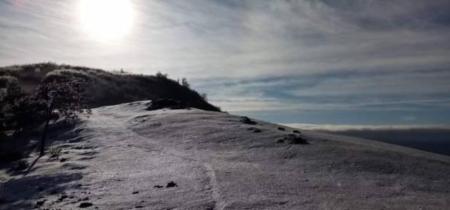 Erbaa'ya mevsimin ilk karı yağdı