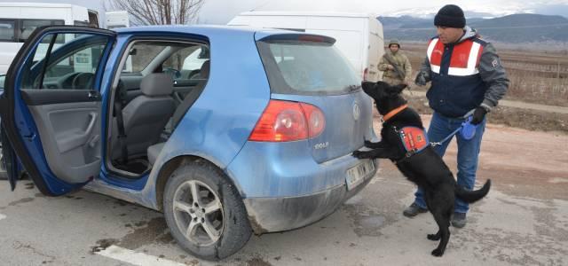 Jandarma narkotik köpekleriyle uygulama yaptı