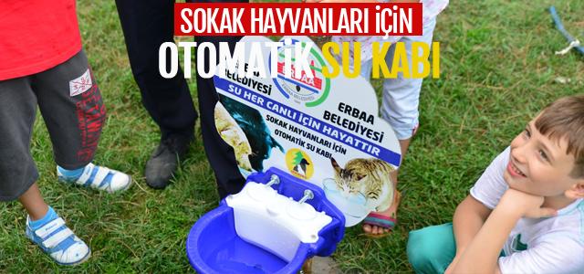 Sokak Hayvanları için Otomatik Su Kabı