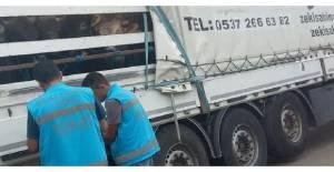Tokat'ta canlı hayvan sevkiyatı kontrolü
