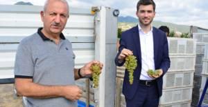 Başkan Karagöl üzüm hasadı yapan çiftçileri ziyaret etti