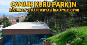 Çamlık Koru Park'ın restoran ve kafeteryası için ihale yapılacak