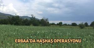 Erbaa'da Jandarmadan Haşhaş Operasyonu
