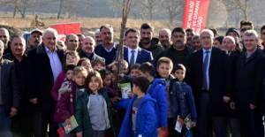 Tokat'ta 9 Bin Ceviz Fidanı Toprakla Buluştu