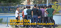 Erbaa'da 46 Kaçak Göçmen Yakalandı